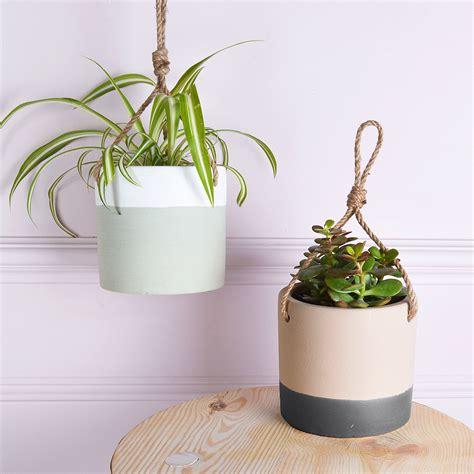create  beautiful indoor garden  winter