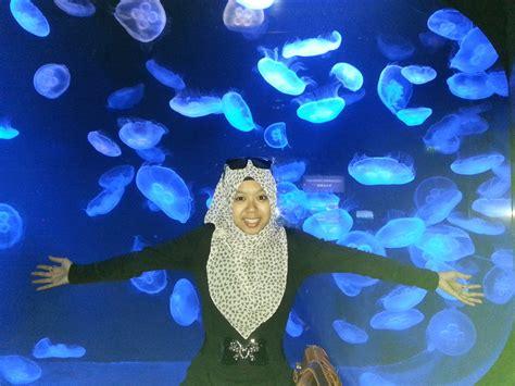 Timer Lu Aquarium archives pgb sbbbang