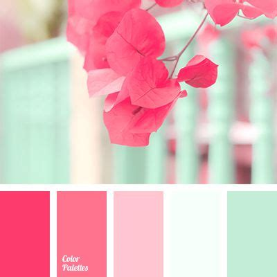 pink color schemes best 25 mint color schemes ideas on mint