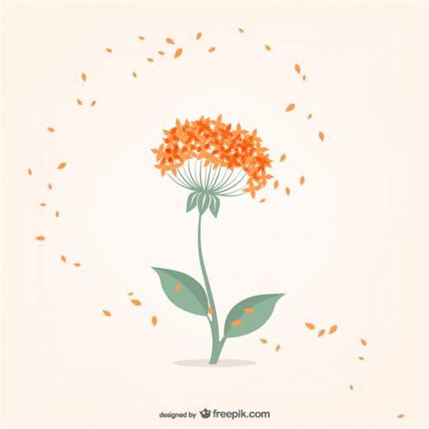 imagenes minimalistas de flores flor minimalista con p 233 talos de color naranja descargar