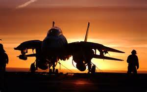 14 Tomcat HD Wallpapers & Pictures   Hd Wallpapers