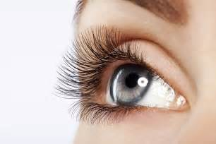 Eyelash Extensions Eyelash Extensions Clearwater Fl Sharmaine S