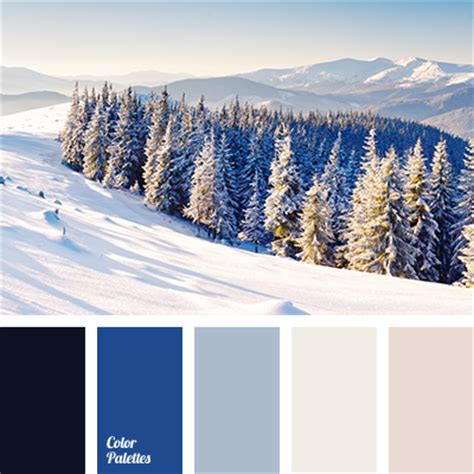 winter color schemes electrum color color palette ideas