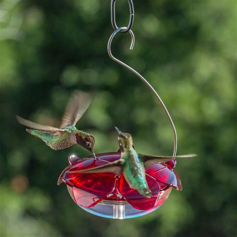 ruby sipper hanging hummingbird feeder clear rs 3hc