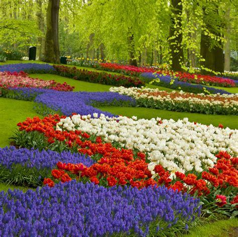 The Most Beautiful Gardens In The World Keukenhof Garden Flower Garden Amsterdam