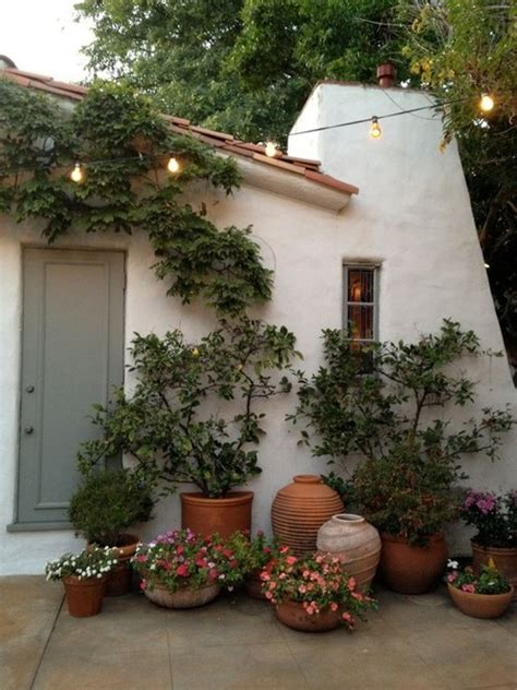 Patio Bushes by Potted Plants Beautiful Container Flowers