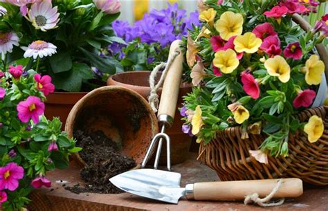 Gardening How Safe Gardening Tips Arlington Chiropractic