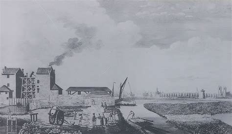 thames river history pollution chelsea waterworks company wikipedia