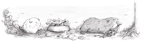 a piglet called truffle creating a piglet called truffle nosy crow