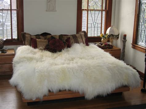 Sheepskin Rug by Sheepskin Rugs Or Sheepskin Hides Or