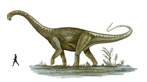 los 10 dinosaurios mas grandes que existieron ecolog 237 a 191 cu 225 l fue el dinosaurio m 225 s grande del mundo