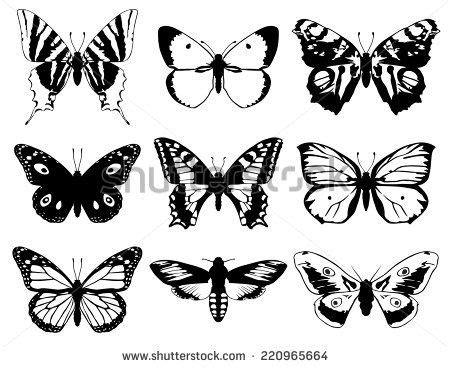 butterfly tattoo no outline set of butterflies vector vintage classic illustration