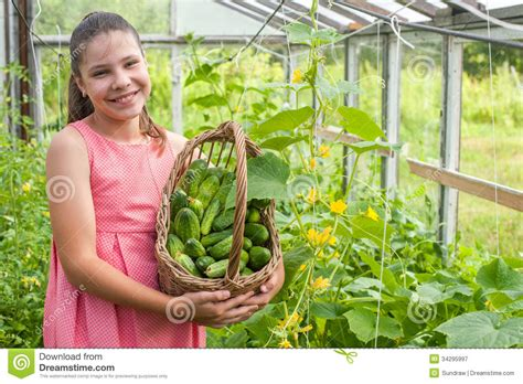 girl with cucumber lovely girl with cucumber royalty free stock photography