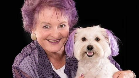 maltese cross pomeranian salisbury council rejects s offer to build 20k sculpture of pet
