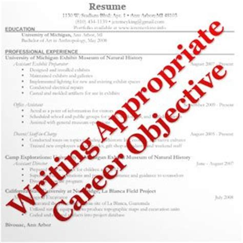 writing career objective writing appropriate career objective placementindia