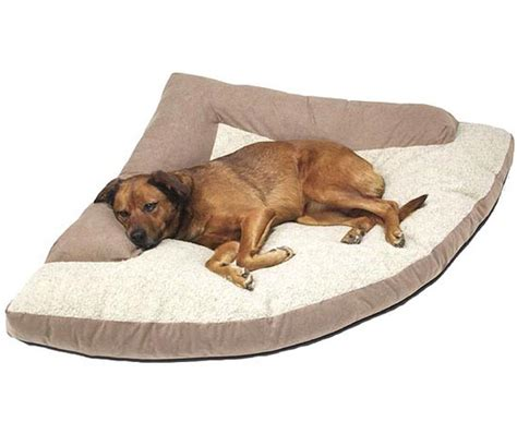 extra large pet beds large dog bed and extra large pet beds for dogs dog breeds picture