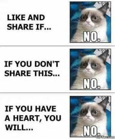 Facebook Meme Pictures - grumpy cat vs facebook meme 2015 meme collection