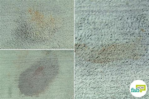 blueberry stain on couch how to get blueberry stain off of carpet carpet