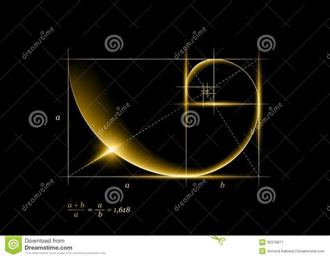 golden section spiral golden section stock image image 20379871