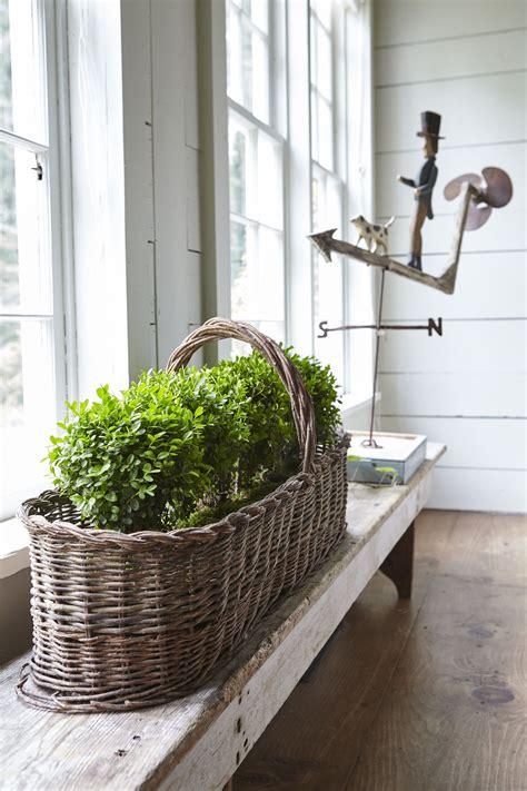 easy ways  brighten  home  annuals