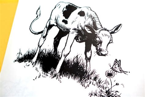 The Story Of Ferdinand a subversive bull robert lawson and the story of