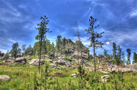 south dakota landscape free stock photo of landscape on the mountain in custer