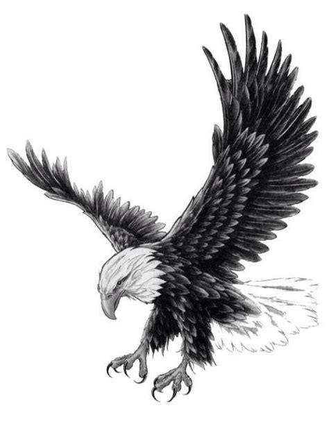 adler design best 20 eagle tattoos ideas on