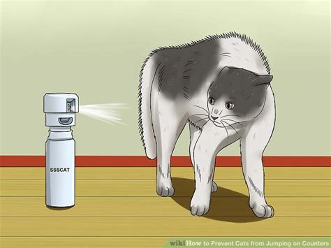 how to stop cats jumping on benches 3 ways to prevent cats from jumping on counters wikihow