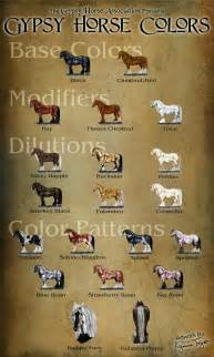 color of horses gha education some basic principles of color genetics