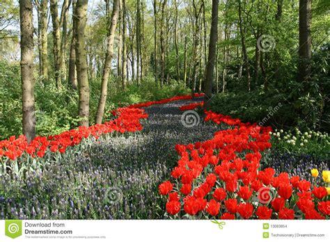 chemin fleuri en bois images stock image 13063854