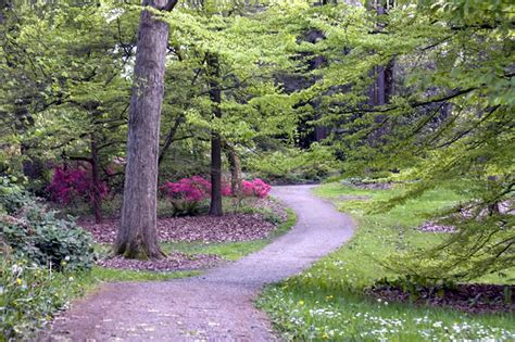 Uw Botanic Gardens Washington Park Arboretum Uw Botanic Gardens