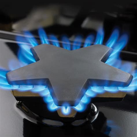 Burner Kompor Blue Gas 1 Tungku Original 30 inch professional series pro harmony standard depth dual fuel range prd304ghu