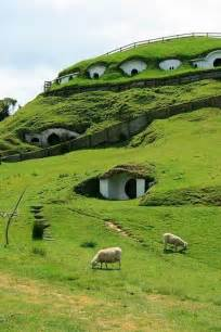 hobbit houses in new zealand take me there pinterest