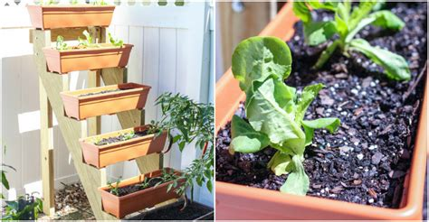 diy herb garden planter diy vertical herb garden planter how to