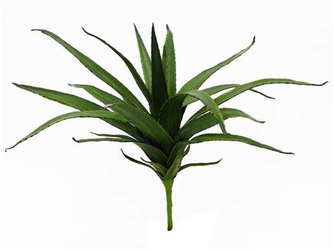 aloe verde aloe verde 50cm 183 piante finte fiori artificiali