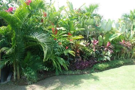 tropical plants for backyard tropical garden balinese garden accessories