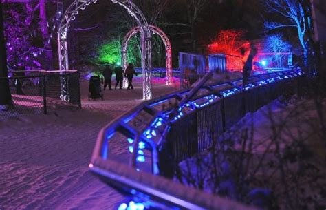 Gallery Festival Lights Up Edmonton Valley Zoo Festival Of Lights Zoo