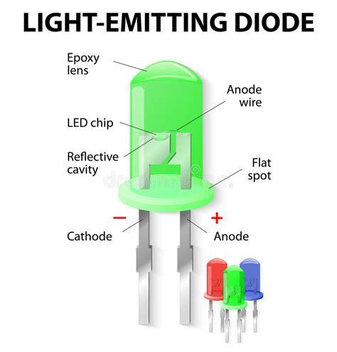 what do led light bulbs look like inside the light emitting diode stock vector