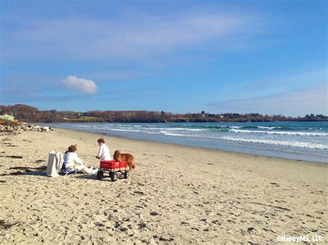 friendly beaches near me happy tails unleashed 5 friendly beaches portland maine happymestuff