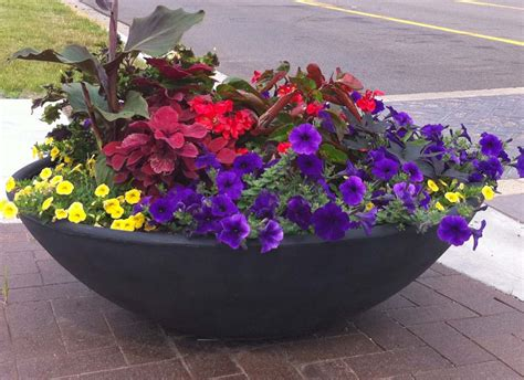 Pictures Of Planters by Bowl Planters Conceptual Site Furnishings