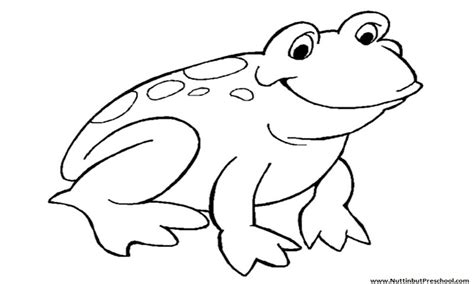 cartoon frog coloring pages grig3 org