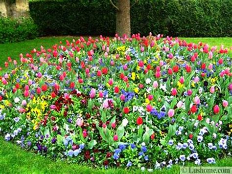 flower bed garden garden design 25 flower beds and yard