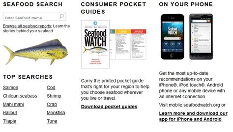 Mba Seafood Pocket Guide by What You Eat Affects Our Oceans