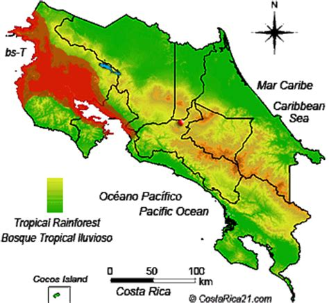 costa rica s tropical rainforest