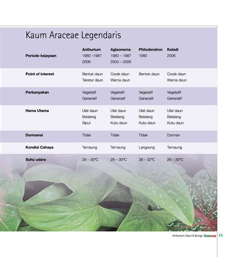 Buku Anthurium jual buku daun bunga anthurium mewah fenomenal oleh tim flona gramedia digital indonesia