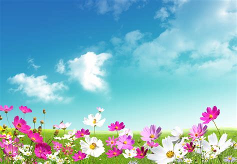 windows background themes spring spring 59 free desktop wallpapers cool wallpapers