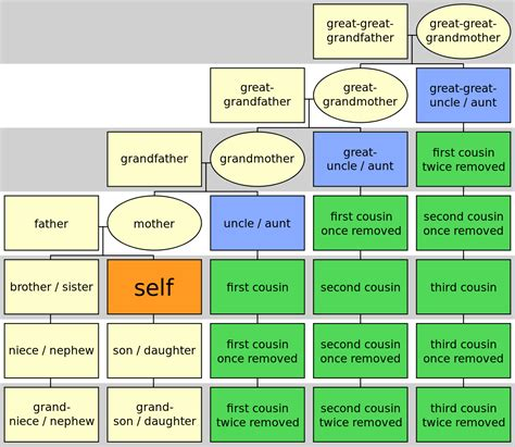 cousin simple english wikipedia the free encyclopedia