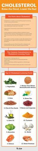 top 12 cholesterol lowering foods