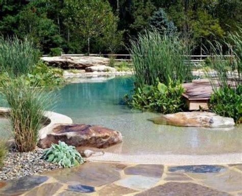 backyard swimming hole 1000 ideas about sand backyard on pinterest fire pit