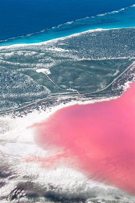 pink lake western australia the hutt lagoon near kalbarri and the